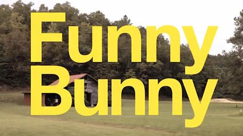 Funny-Bunny-Alison-Bagnall